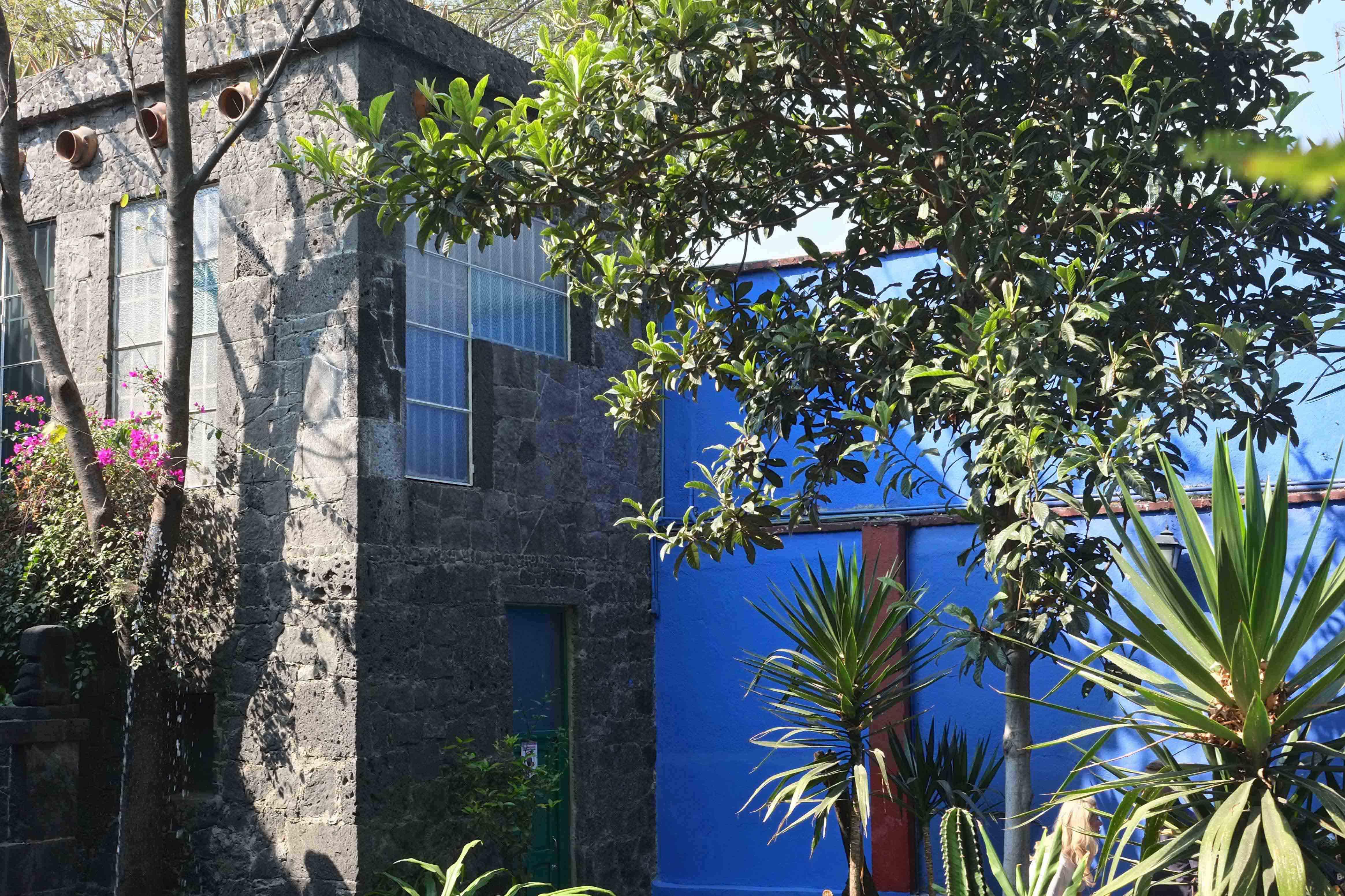 La_Casa_Azul_4_fot.anna_stec